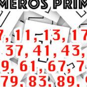 Em busca dos números primos